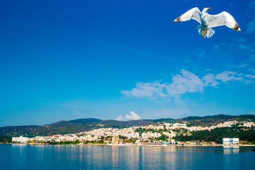 Πετώντας πάνω από τα λιμάνια / Flying over ports
