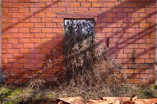 Κάποτε στην πόρτα σου / Once at your doorstep