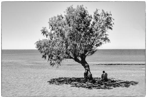 Κάτω από το δέντρο / Under the tree
